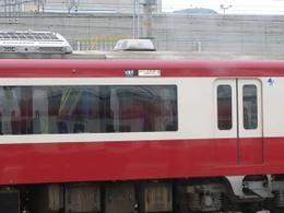 P5300226