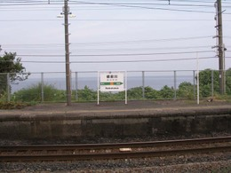 P8150159