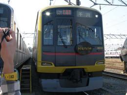 Pb170042