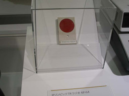 P6080042