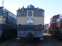 Pb150101