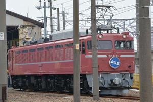 Dsc_8731