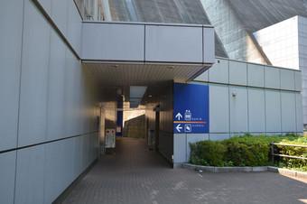 Dsc_3806