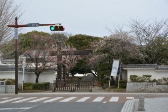 三の丸小学校の門