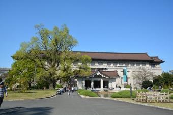 昼間の国立博物館の建物