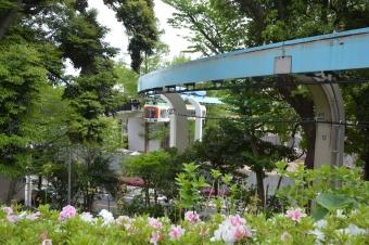 上野動物園モノレール
