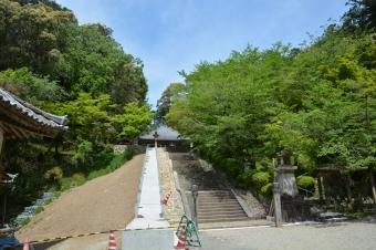 大師堂に行く階段